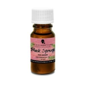 100% Pure Black Spruce Essential Oil, Picea Mariana 10ml - Black Sheep Farm