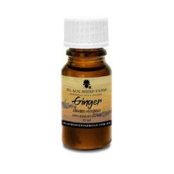 100% Pure Ginger Essential Oil, Zingiber Officinale 10ml - Black Sheep Farm