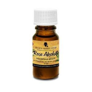 3% Rose Essential Oil Absolute in 97% Jojoba, Rose Centifolia 10ml - Black Sheep Farm