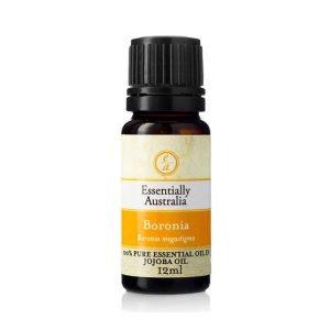 Boronia 3% Absolute in Jojoba Oil 12ml - Essentially Australia