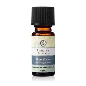 Eucalyptus Blue Mallee Essential Oil 12ml - Essentially Australia