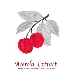 Acerola Extract 17% Vitamin C