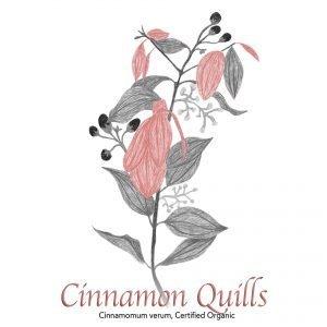 Cinnamon Verum Quills - The Herb Temple