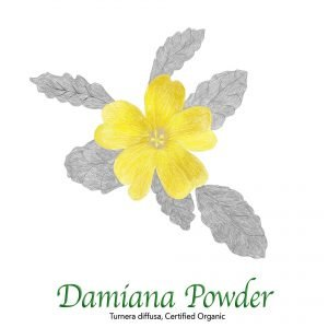 Damiana Powder - The Herb Temple