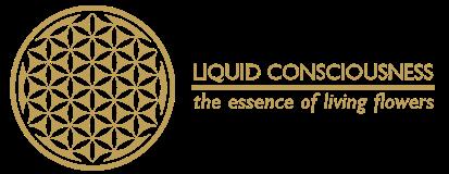 Liquid Consciousness