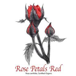 Red Rose Petals Organic