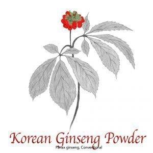 Korean Ginseng Panax Powder