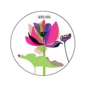 Sacred Lotus Fridge Magnet