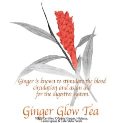 Ginger Glow Tea Blend - The Herb Temple