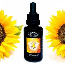 Empower Flower Essence ~ Solar Plexus Chakra