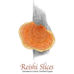 Reishi Slices Organic - The Herb Temple