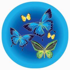 Australian Butterflies Magnet