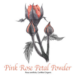 Pink Rose Petal Powder Organic - The Herb Temple