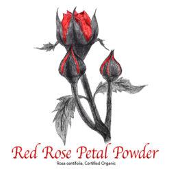 Red Rose Petal Powder Organic - The Herb Temple